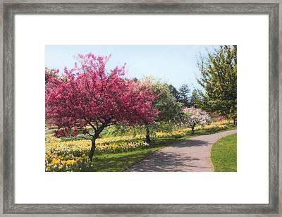 Crabtree Allee II Framed Print