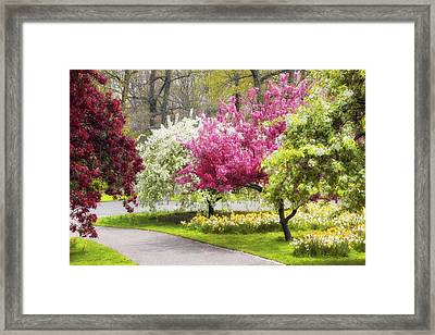 Crabtree Allee  Framed Print by Jessica Jenney
