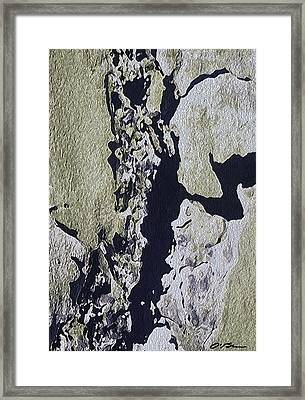 The Cracked And Crumbling Wall Framed Print