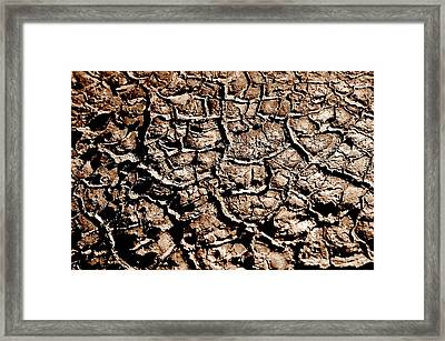 Cracked Earth Framed Print by Caroline Clark