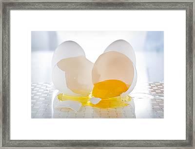 Cracked Egg Framed Print by Steve Gadomski
