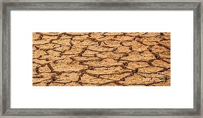 Cracked Mud Framed Print by Marv Vandehey