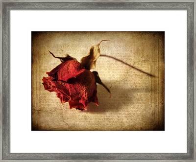Crackling Rose Framed Print by Jessica Jenney