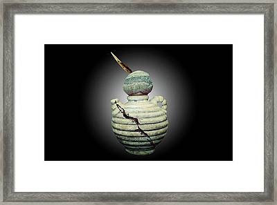 Crackpot Ninja Warrior From Maine Framed Print