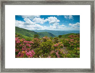 Craggy Gardens Blue Ridge Parkway Stunning Vista Framed Print
