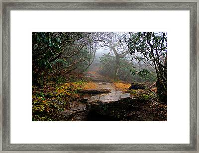 Framed Print featuring the photograph Craggy Gardens by Jessica Brawley