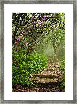 Framed Print featuring the photograph Craggy Steps by Joye Ardyn Durham