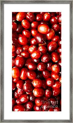 Cranberries Foodie Phone Case Framed Print by Edward Fielding