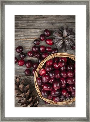 Cranberries In Basket Framed Print by Elena Elisseeva