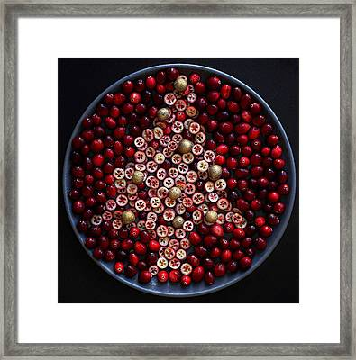 Cranberry Christmas Tree Framed Print