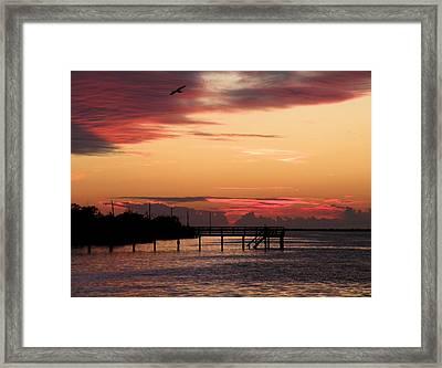 Cranberry Sunset Framed Print by Rosalie Scanlon