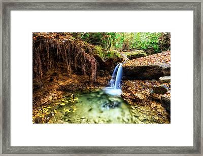 Cranberry Wilderness Plunge Pool Framed Print by Thomas R Fletcher