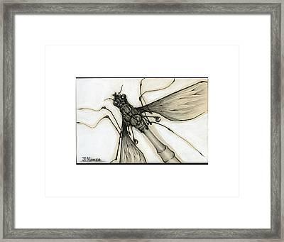 Crane Fly Framed Print by Jesse Alonzo