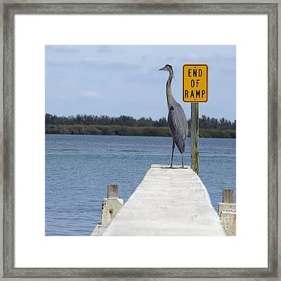 Crane Standing On A Boat Ramp Framed Print by Skip Nall