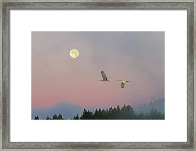 Framed Print featuring the photograph Cranes And A Full Moon At Dawn by Peggy Collins