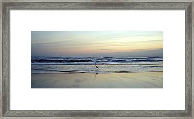 Crane's Breakfast Stroll Framed Print