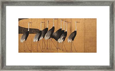 Cranes Framed Print by Ogata Korin