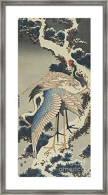 Cranes On Pine Framed Print by Hokusai