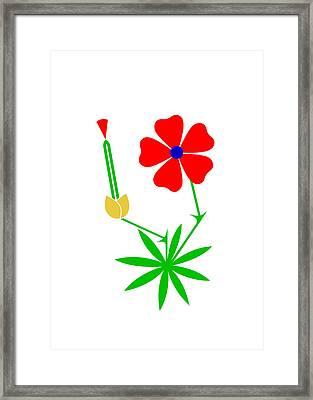 Cranesbill Framed Print by Asbjorn Lonvig