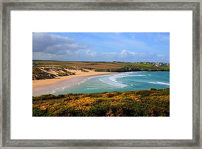Crantock Beach And Yellow Gorse North Cornwall England Uk Framed Print