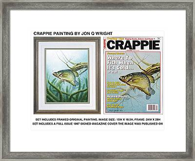 Crappie And Minnows Framed Print