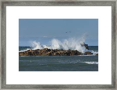Crashing Waves And Gulls Framed Print