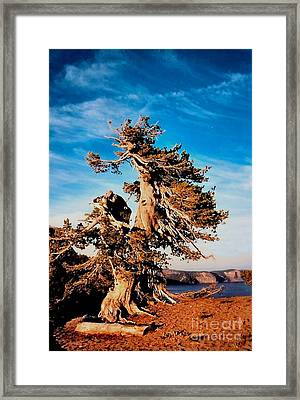 Crater Lake Winds Framed Print by Diane E Berry