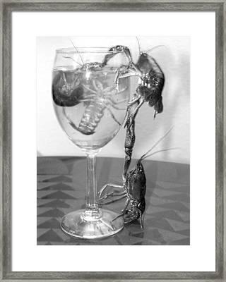 Crawdad Cocktail Framed Print by Stephen Muller