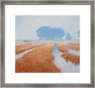 Crawfish In The Mist Framed Print