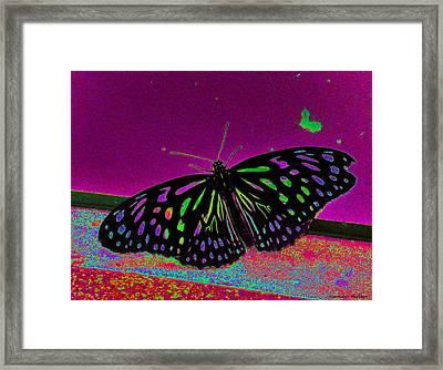 Crayon Butterfly Framed Print