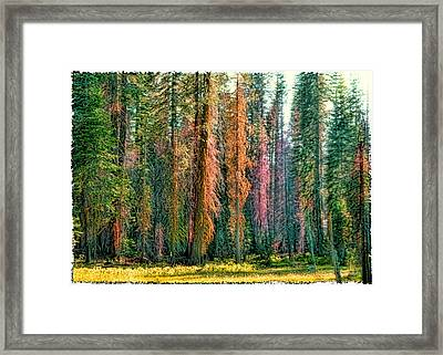 Crayon Forest Framed Print by Michael Cleere