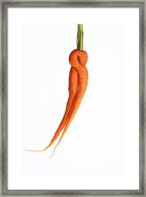 Crazy Carrot Fine Art Food Photography Framed Print