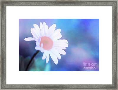 Crazy Daisy Framed Print