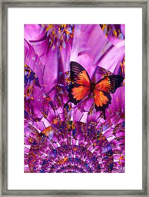 Crazy Flower Butterfly Framed Print