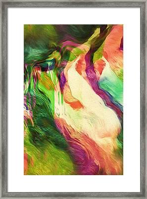 Crazy Modern Wild Life Abstract Framed Print