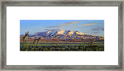Crazy Mountains-morning Framed Print by Paul Krapf