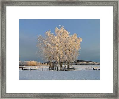 Creamer Field Framed Print