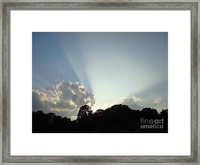 Creation Framed Print by B Rossitto