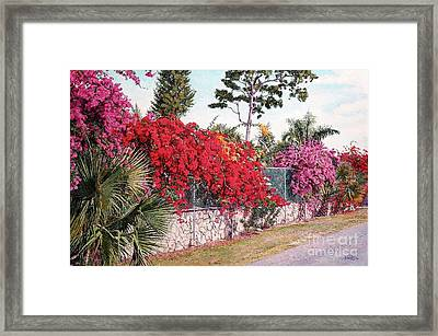 Creations Glory Framed Print