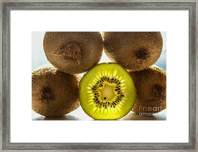Creative Kiwi Light Framed Print