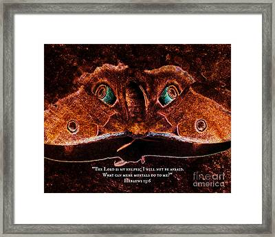 Creature Feature Framed Print by Anita Faye