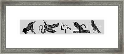 creatures of ancient Egypt Framed Print by Michal Boubin