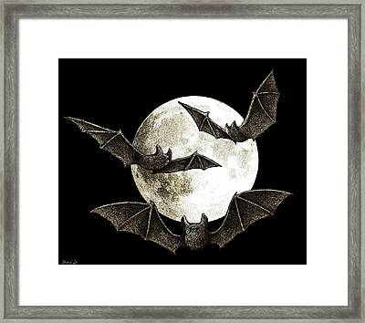 Creatures Of The Night Framed Print