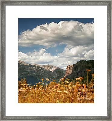 Creede Framed Print