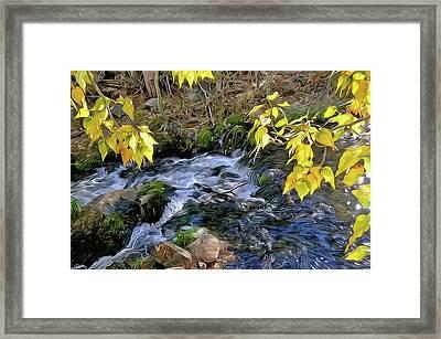 Creek And Aspen Leaves By Frank Lee Hawkins Framed Print