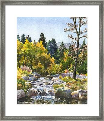 Creek At Caribou Framed Print by Anne Gifford