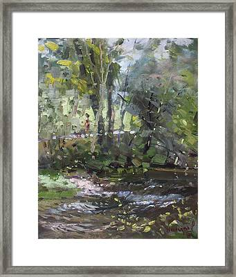 Creek At Three Sisters Islands Framed Print by Ylli Haruni