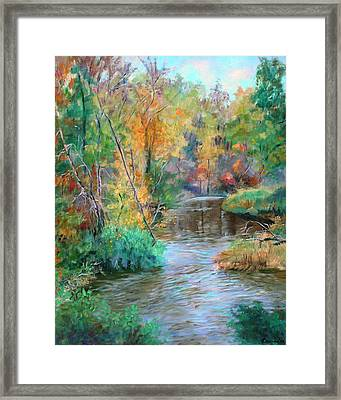 Creek At Whitney Point  Ny Framed Print by Ethel Vrana