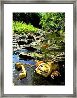 Creek Call Framed Print by Stephen Dorsett