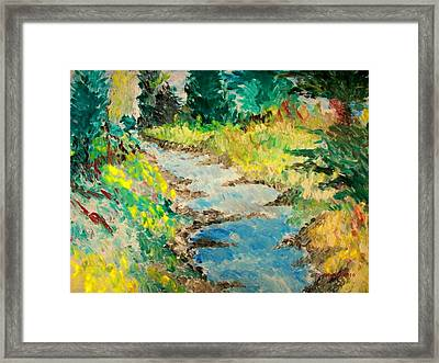 Creek Framed Print by Cary Singewald